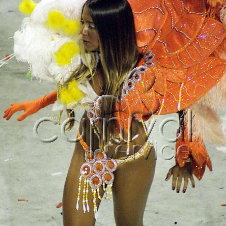 Rio Carnival 2007 Pictures School Rio Carnival 2007
