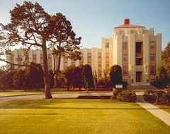 A photo of Hoover Pavilion, aarge four-story building with a tree and grass