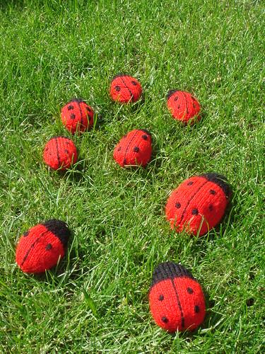 Knitting Ladybug Ladybird Headband : Cc b g v