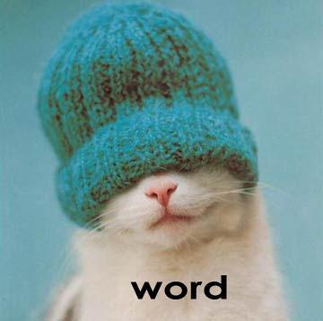 word cat