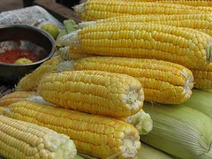 fish(0.0), dish(0.0), sweet corn(1.0), vegetable(1.0), vegetarian food(1.0), maize(1.0), corn on the cob(1.0), produce(1.0), food(1.0), corn on the cob(1.0), cuisine(1.0),