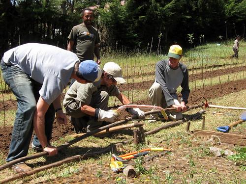 Chilemo - Workshop for Peace Corps Volunteers - November 2010