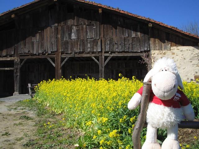 Caserío Igartubeiti Farmhouse