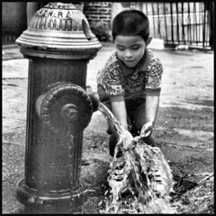 NY, Harlem Fire Hydrant