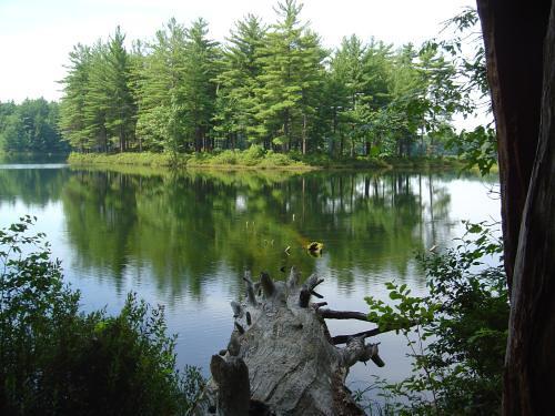 Goose Pond Keene Nh Flickr Photo Sharing