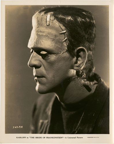 The Bride of Frankenstein (Universal, 1935) 9 by Aeron Alfrey