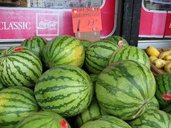 plant(0.0), watermelon(1.0), vegetable(1.0), produce(1.0), fruit(1.0), food(1.0), winter squash(1.0), cucurbita(1.0), gourd(1.0),