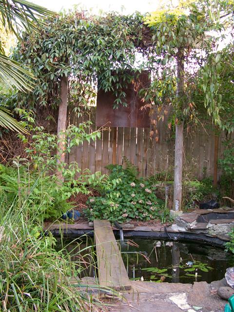 Pond 2009