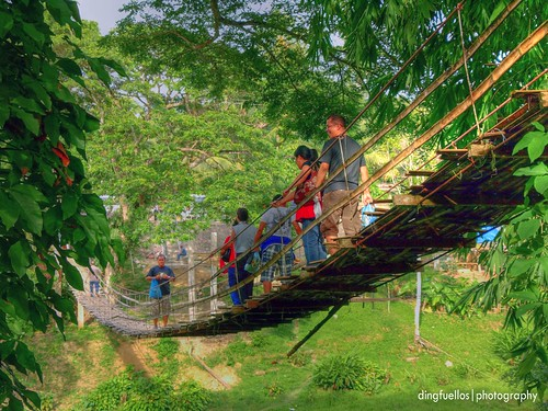 Hanging bridge in Bohol