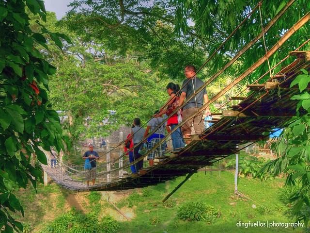 Hanging bridge in Bohol