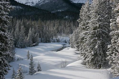 Yellowstone,  Winter