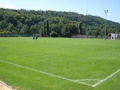 field(0.0), sport venue(0.0), soccer-specific stadium(0.0), baseball field(0.0), golf course(0.0), meadow(0.0), pasture(0.0), grassland(0.0), stadium(0.0), grass(1.0), sports(1.0), plain(1.0), artificial turf(1.0), lawn(1.0),