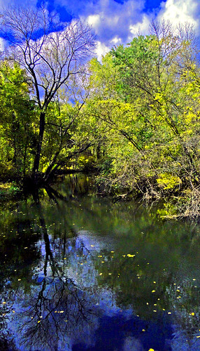 autumn trees usa fall nature water forest river landscape newjersey
