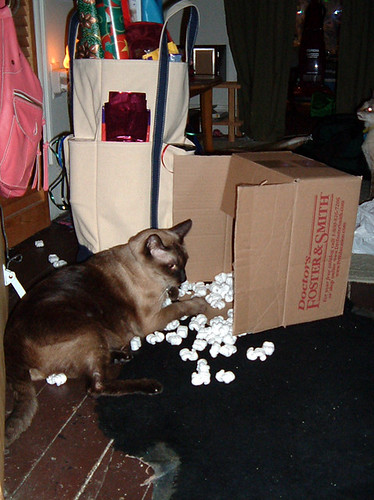 harri-popcorn