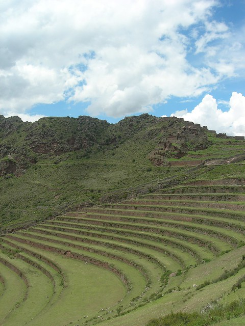 Inca terrace farming flickr photo sharing for Terrace cultivation