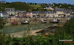 ~ Le port de Dahouët, Bretagne ~