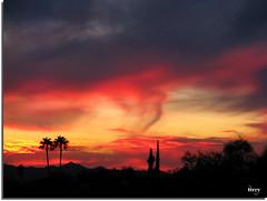 Fotos from Tucson October/November/December 2010