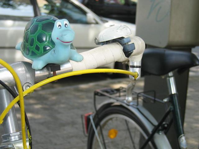 Turtle on bike photo by iHanna