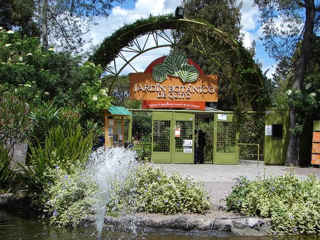 Quito entrada jard n bot nico jard n bot nico de quito for Jardin botanico costo entrada