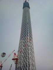 東京スカイツリー (11)