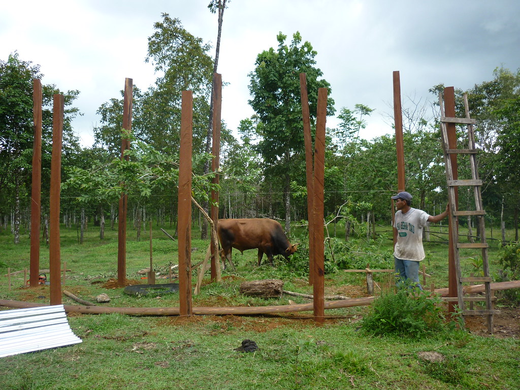 This photo shows the foundation of the livestock enclosure.   Read 'Panthera's Guide to Building a Livestock Corral' from our October 2010 newsletter at www.panthera.org/november-2010-newsletter.  Learn more about the work Panthera's Costa Rica team is doing at pantheracostarica.org/.   Also read about our jaguar conservation work in other countries through our Jaguar Corridor Initiative - www.panthera.org/programs/jaguar/jaguar-corridor-initiative - and Pantanal Jaguar Project - www.panthera.org/programs/jaguar/pantanal-jaguar-project.    © Daniel Corrales/Panthera