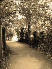 The Sunlit Alleyway - B/W with Warm-up Filter