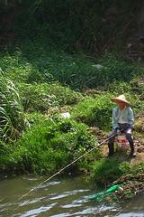 stream(0.0), flower(0.0), leaf(1.0), fishing(1.0), water(1.0), tree(1.0), river(1.0), recreational fishing(1.0), green(1.0), wilderness(1.0), jungle(1.0), fly fishing(1.0),