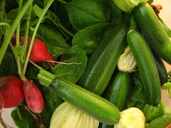 plant(0.0), bird's eye chili(0.0), vegetable(1.0), summer squash(1.0), produce(1.0), food(1.0), cucumber(1.0),