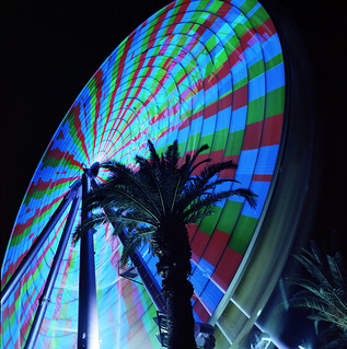 Ferris Wheel and Palms