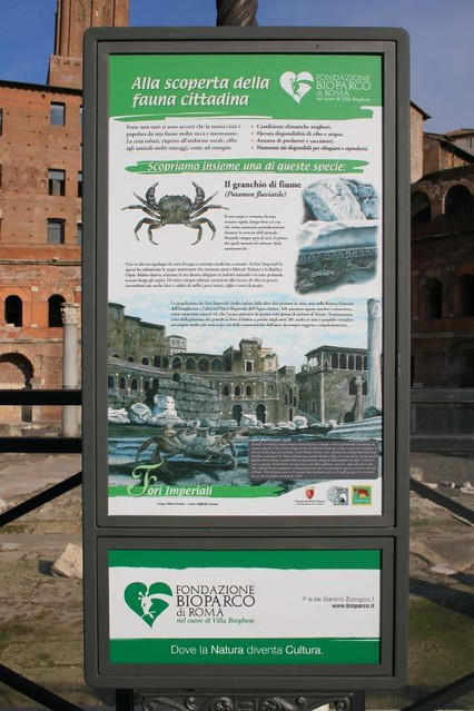 "The Forum and Market of Trajan: Animal Life Among the Ruins: the ""Colonia di Granchi."" (Winter 2006 & Spring 2010)."