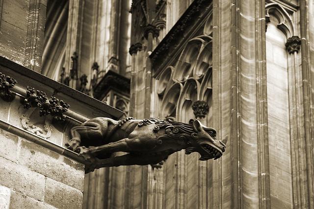 Köln gargoyle