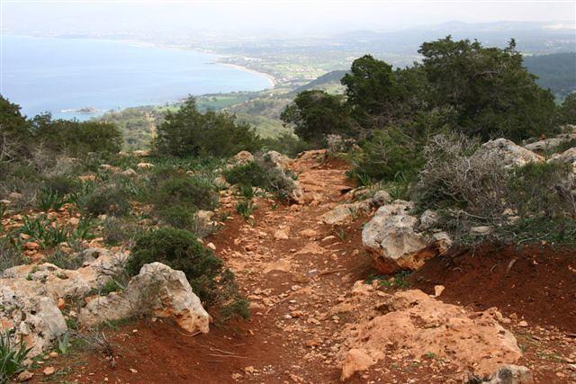 Cyprus 2005 - Paphos