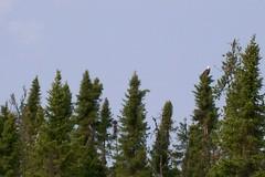 Eagle Lake, Canada