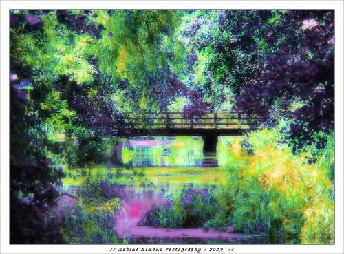 bridge nature searchthebest nederland expressionism leidschendam monetsgarden ©allrightsreserved ultimateshot veursesteenweg