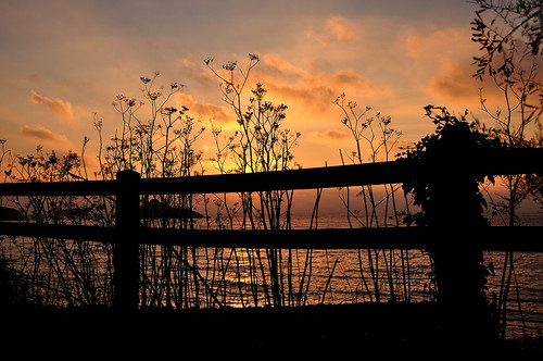 Sunrise over the fence