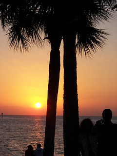 SUNSET / PALM TREES