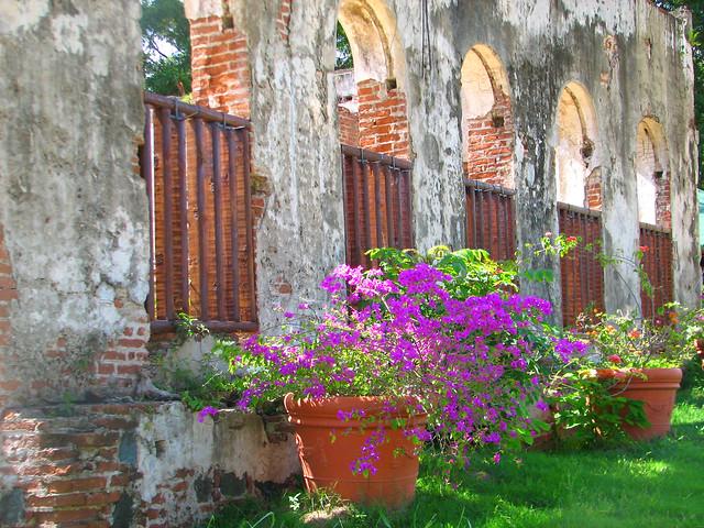 Ruinas en el jard n bot nico de caguas for Bodas en el jardin botanico de caguas
