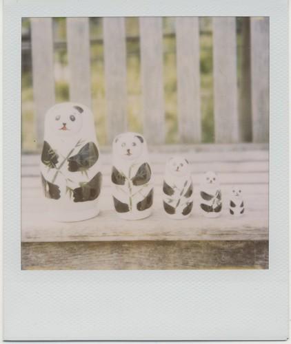 Panda matryoshka doll - 無料写真検索fotoq