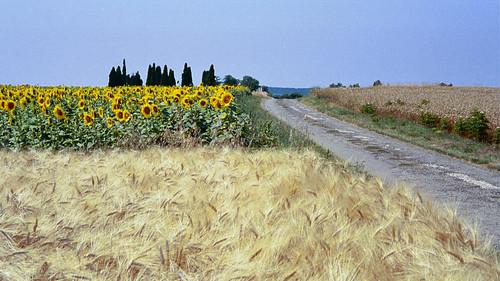France: Pilgrim Road