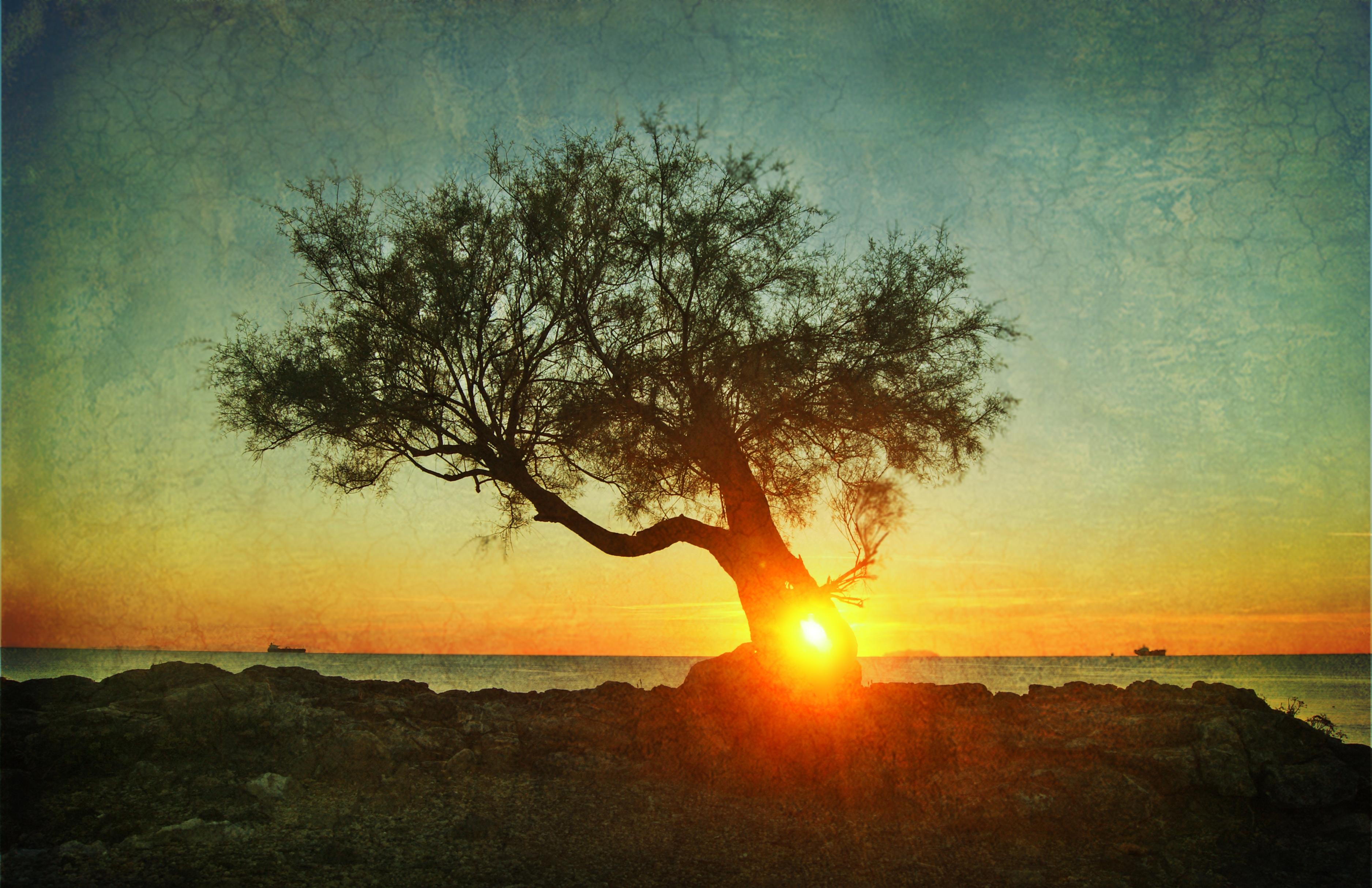 Fondos de paisajes naturaleza en alta resolucion fondo for Fondos de pantalla alta resolucion