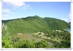 20041018_Guana@BVI_White Bay_P02_A