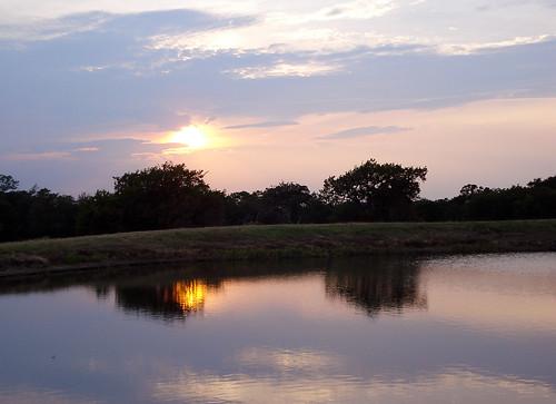sunset texas fishcamp roysecity