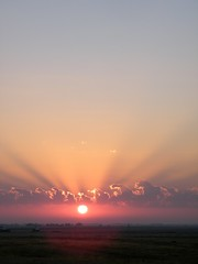 Sunbeam Sunrise