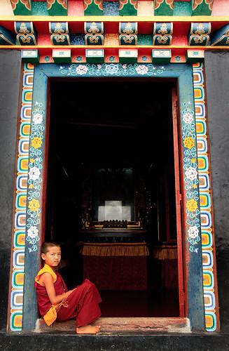 Ganktok India Picture : Monk