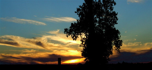 trees sunset summer sky sun clouds rural geotagged pod kentucky bluesky farmland summertime pow westernkentucky summersunset hendersoncountykentucky geo:lat=3782165 geo:lon=87259512 1on1sunrisesunsetsphotooftheweek 1on1sunrisesunsetsphotooftheweekaugust2007 jasonpresser corydonkentucky 11223344556677