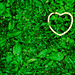 Green Heart (And the Green Grass Grows All Around, All Around) by CarbonNYC [in SF!]