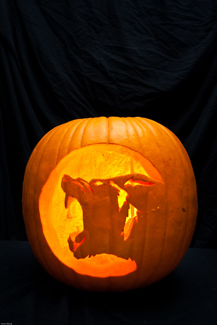 Pumpkin carving wolf flickr photo sharing