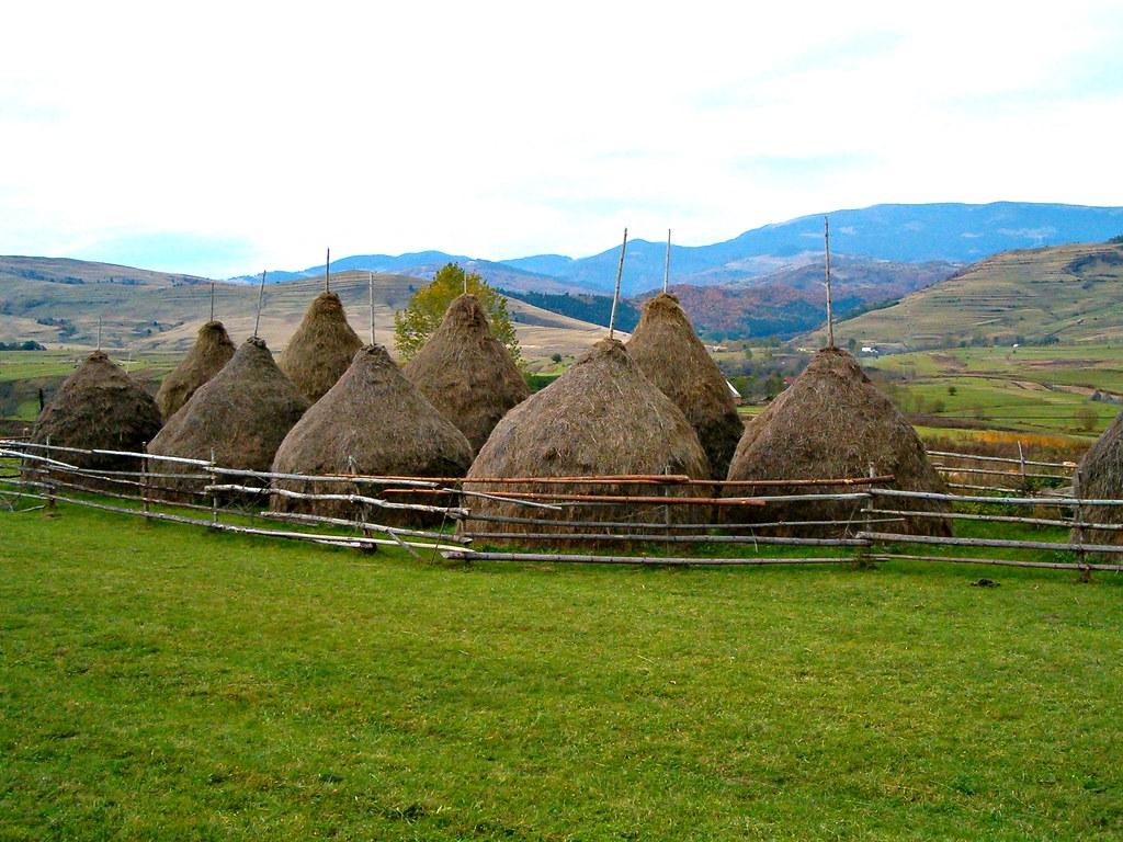 Răchiţele, Cluj County, Transylvania, Romania: Apuseni Mtns.