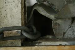 Natural peephole in door