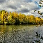 Photo Parc du Grand-Coteau